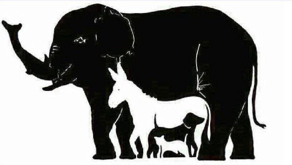 Cuantos animales eres capaz de ver en la imagen?