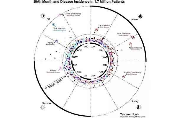 ¿El mes en el que naciste influye en tu salud?
