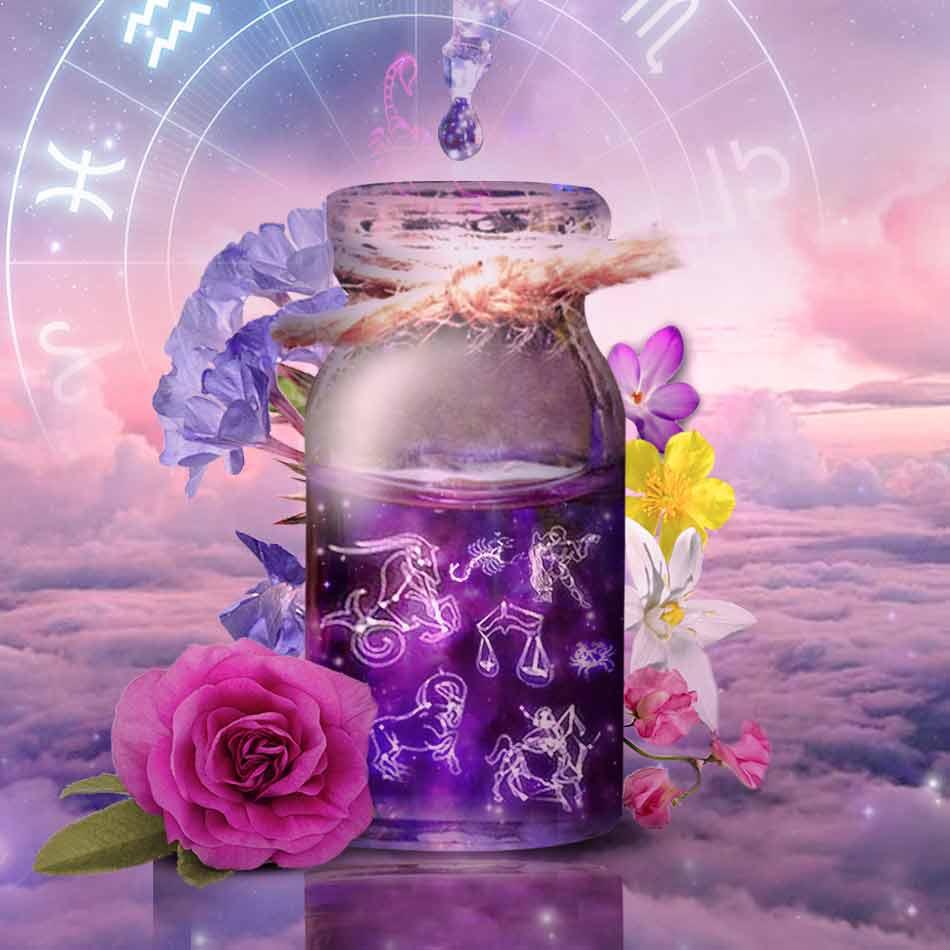 Los signos del zodiaco y las flores de Bach